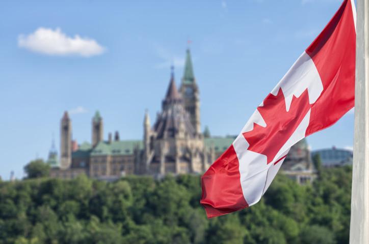 Canadian enforcer defends immunity shake-up