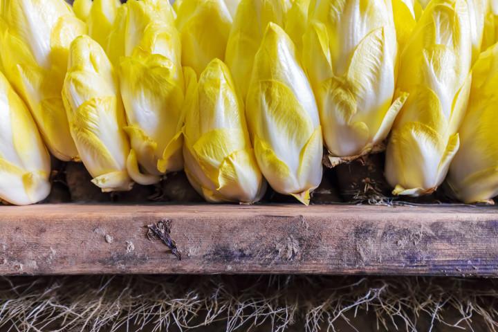 ECJ clarifies scope of EU agricultural exemptions