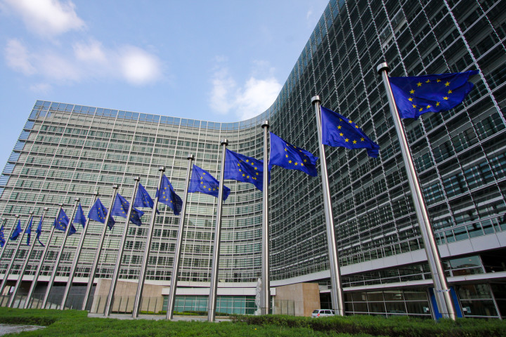 European Commission sets out patent position