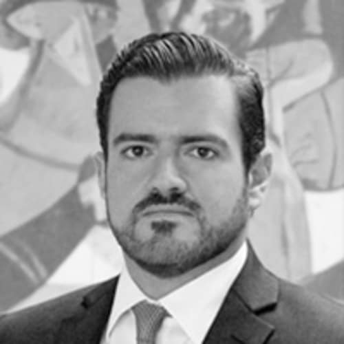 Luis M Castro