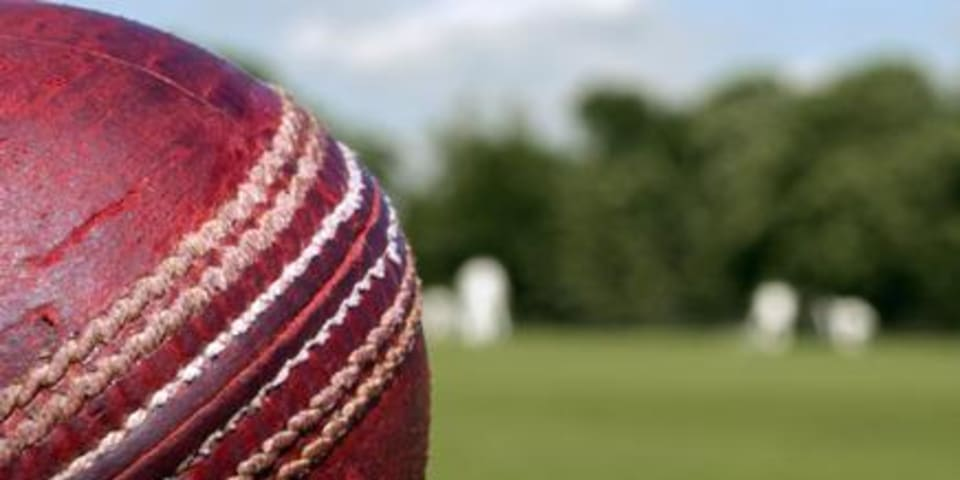 Sony e-mails show who's batting in cricket case
