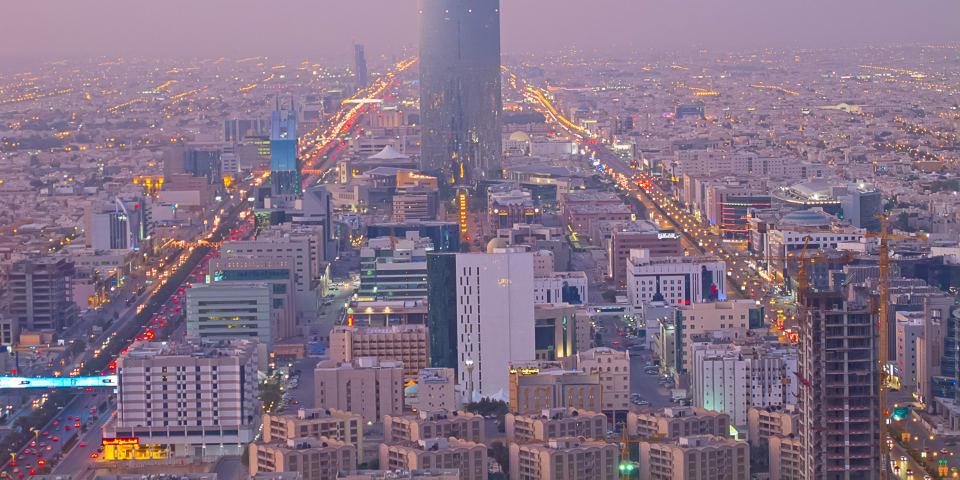 New institution signals Saudi potential