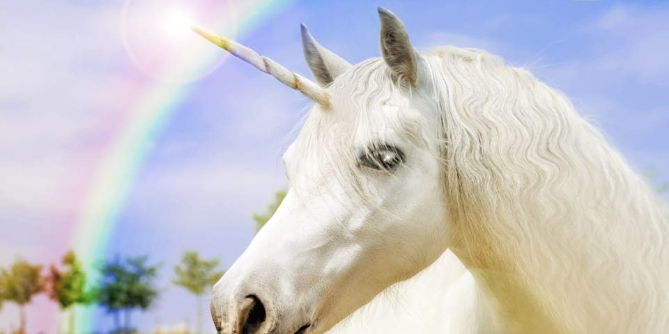In search of the elusive unicorn