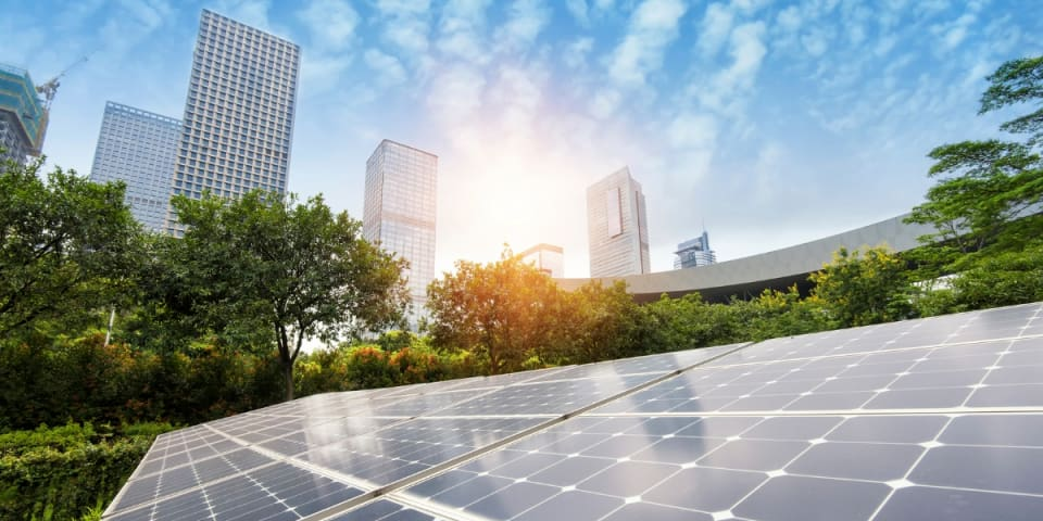 US solar company looks to Trump for trade protections in bid to survive Chapter 11