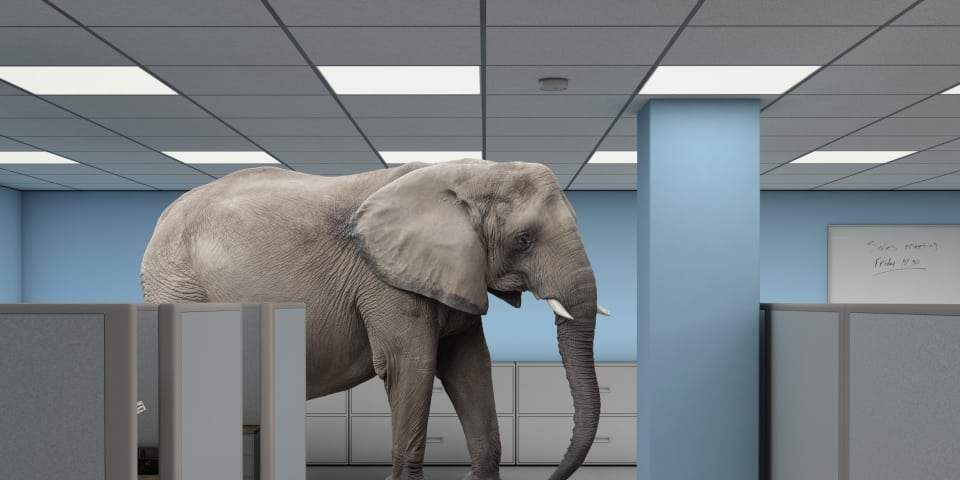The African elephant in the room