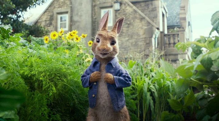 Image for Peter Rabbit
