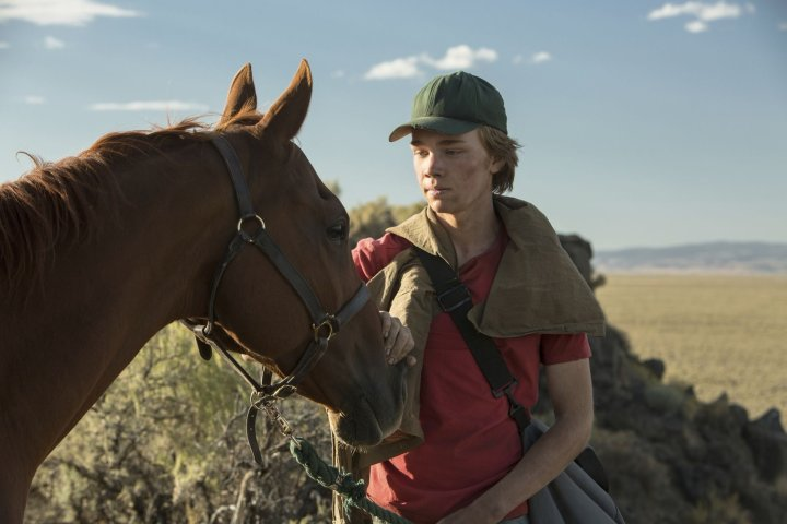 Image for Lean on Pete