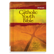 The Catholic Youth Bible -  New American Bible Revised Edition