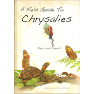 A Field Guide To Chrysalies by Paul Keskey Paperback