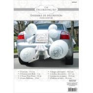 Car Decor Kit-Just Married