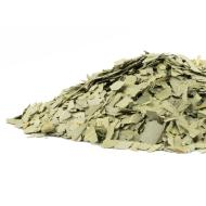 Eucalyptus cut CO 1 oz