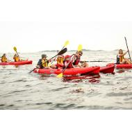 Paddle Camp-1 Wk Session