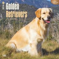 Calendar Golden Retreiver