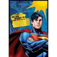 Loot bags-Superman-8pk