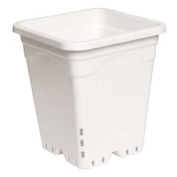 "Active Aqua 12"" x 12"" Square White Pot, 12"" Tall, UNIT"