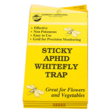 Seabright Laboratories White Fly Traps, 5 pack