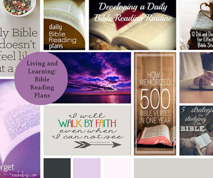 Mood board for Bible website