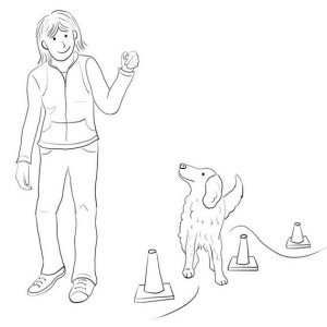 Spot 5 from What to Expect When Adopting a Dog - Digital Drawing