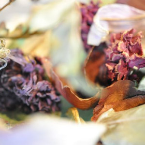Dry Flower Painting - Photography