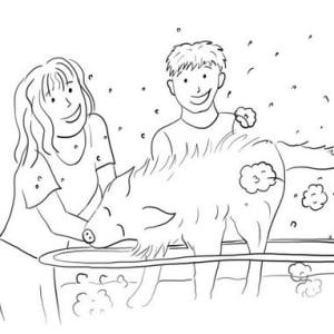 Spot 3 from What to Expect When Adopting a Dog - Digital Drawing
