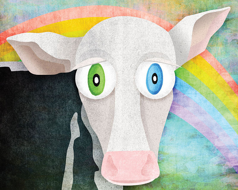 The Cow Who Freed Himself - Digital Illustration