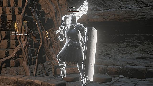 dark souls 3 complete guide to npc invasions and summons knight slayer tsorig