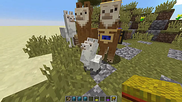 breeding llamas minecraft