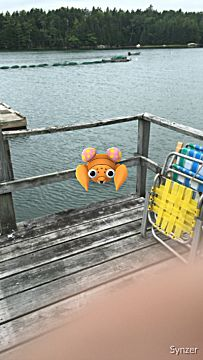 Pokemon Go how to catch Pokemon