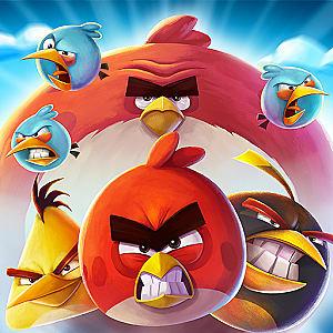 angry birds, bird, pig, poster