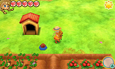 Daily Routine Guide Story of Seasons Trio of Towns day to day pet