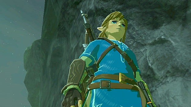 breath of the wild how to change hair
