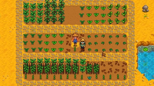 how to build a scarecrow stardew valley