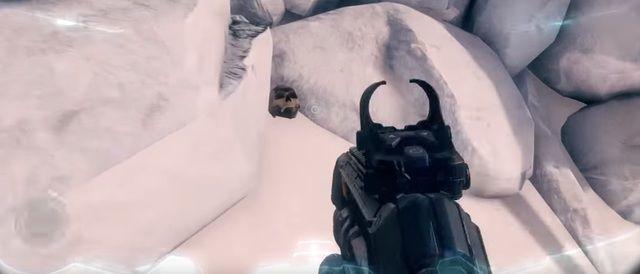 Halo 5 Tough Luck Skull