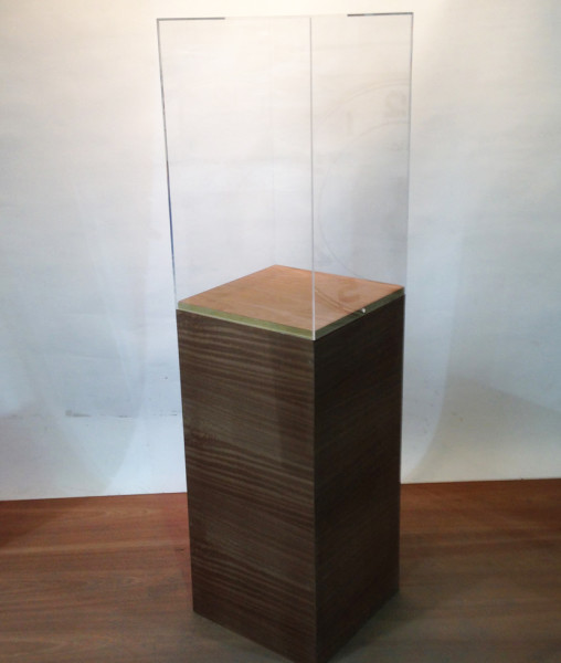 2: Wooden Plinth with Tall Perspex Case