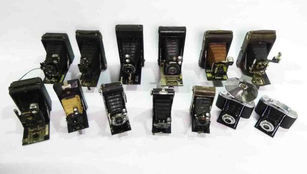 1: Vintage Bellows Cameras