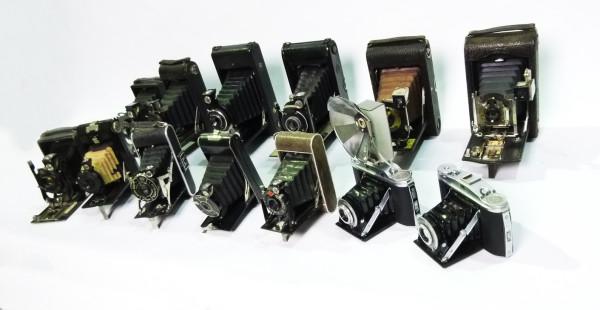 2: Vintage Bellows Cameras
