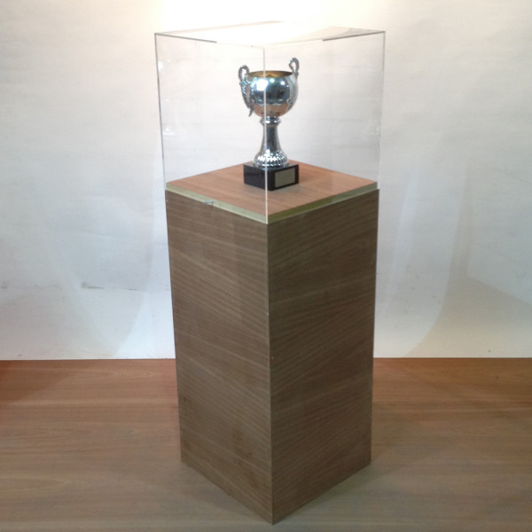 2: Wooden Plinth with Short Perspex Case