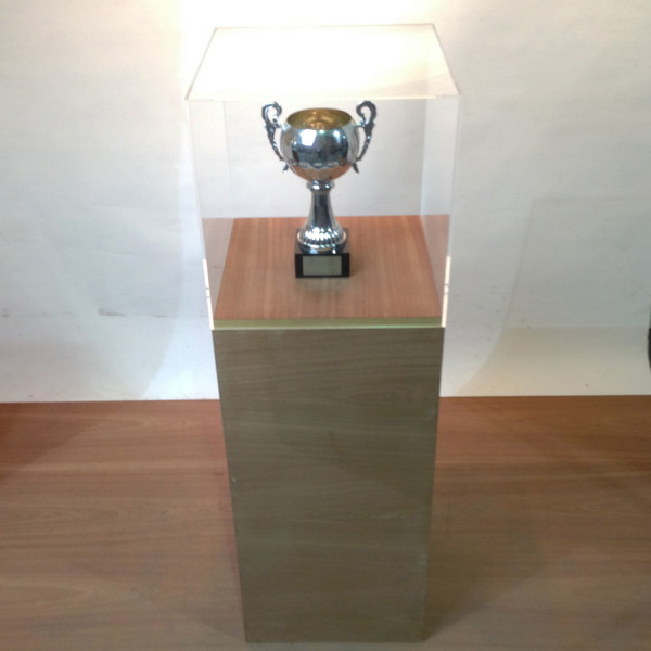 1: Wooden Plinth with Short Perspex Case
