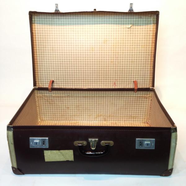 2: Large Brown Travel Case