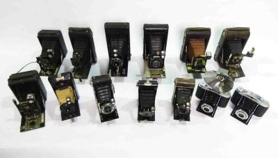 Vintage Bellows Cameras