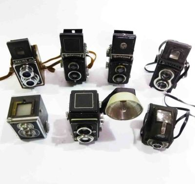 Retro Twin Flex Cameras
