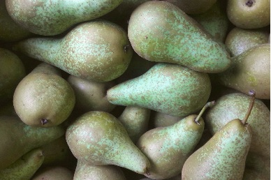 2kg Local Pears