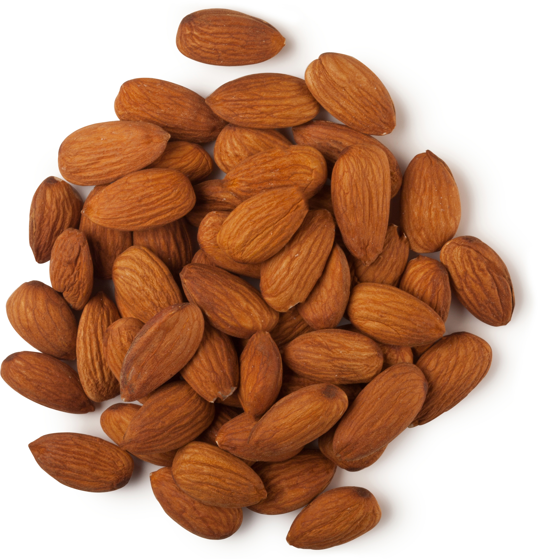 Almond Oil | Lush Fresh Handmade Cosmetics Almond