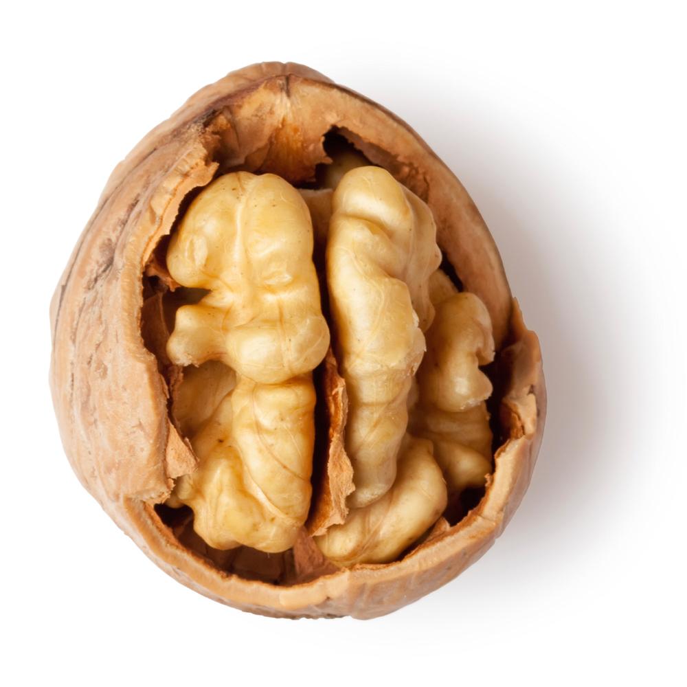 Powdered Walnut Leaf Lush Fresh Handmade Cosmetics Uk