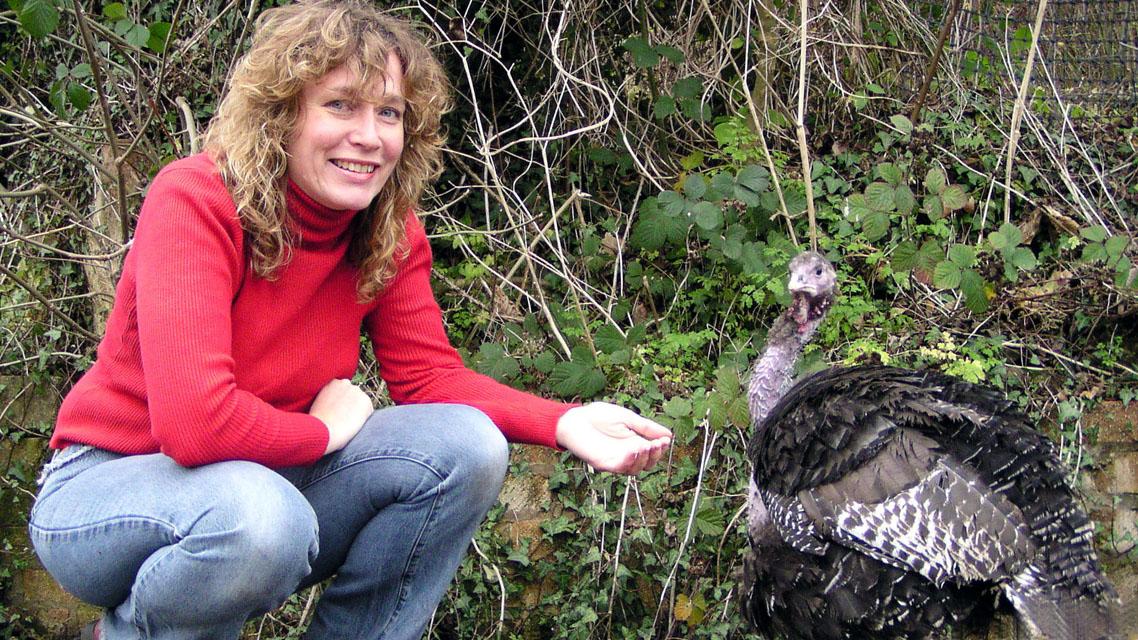 Turkeys and Veganism | Juliet Gellately (Viva!)