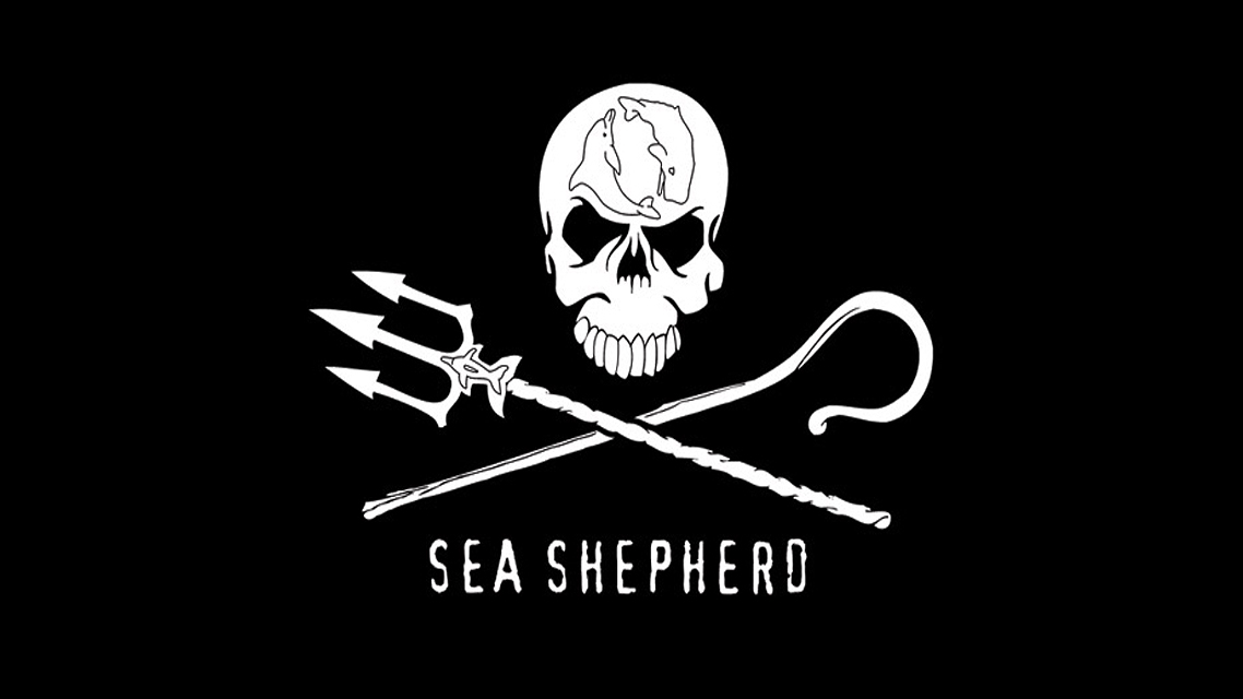 Protecting the Marine Environment | Sea Shepherd UK