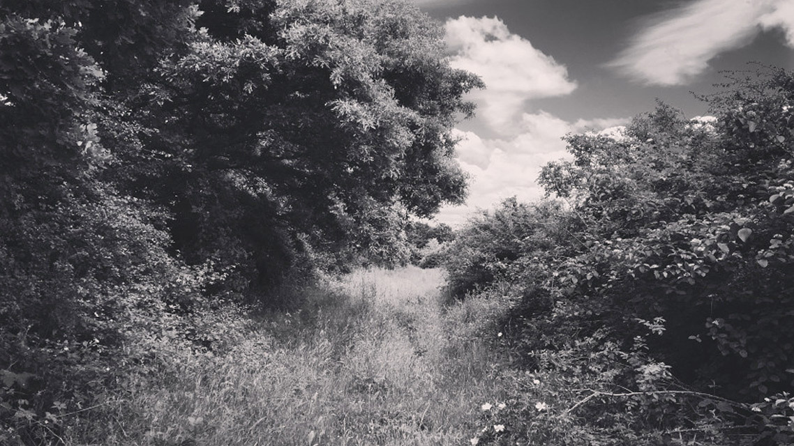 Matt Shaw | Reimagining Lodge Hill