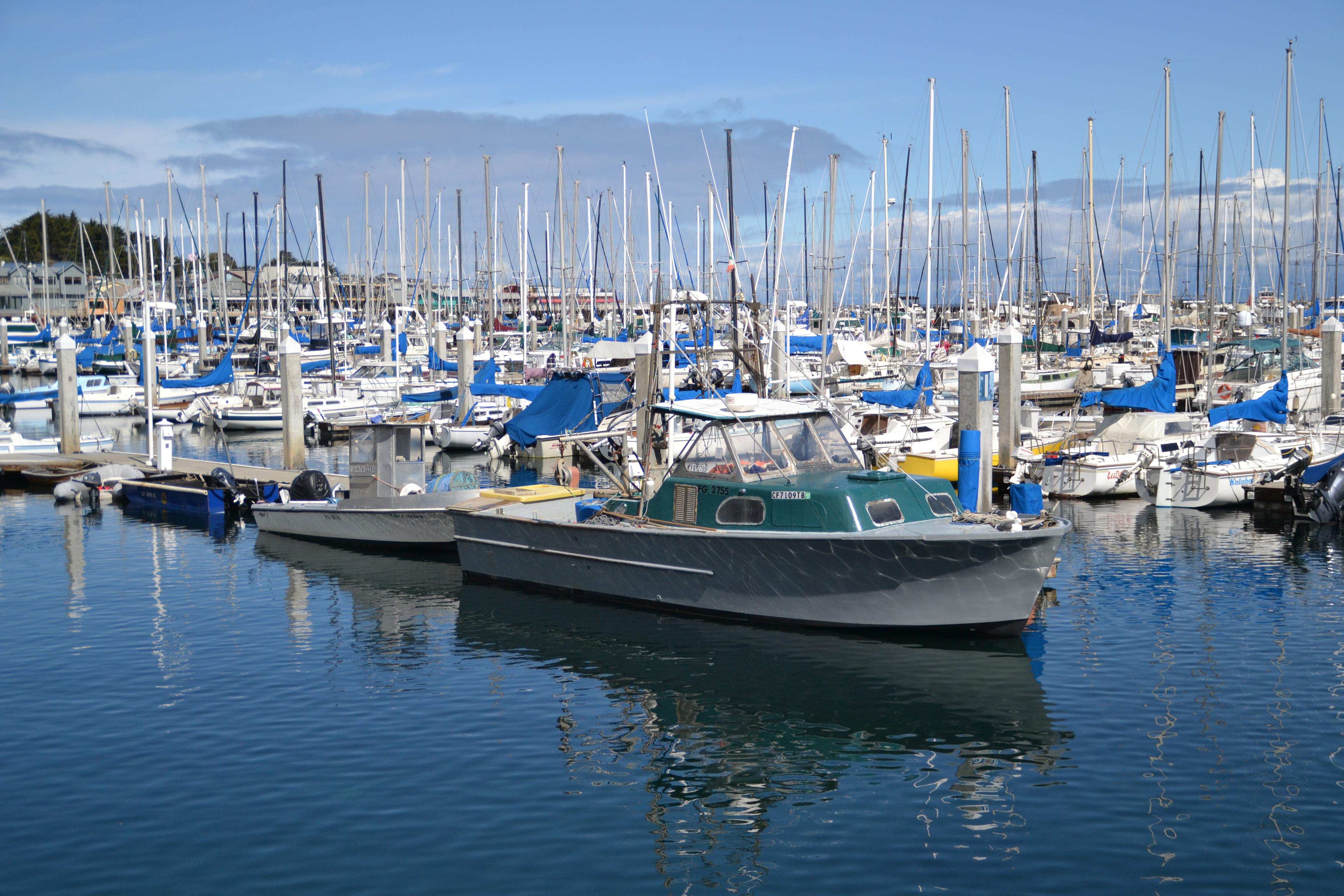 Monterey Community Guide - Tim Allen Properties