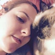 Cat lovers in Sydney's inner west