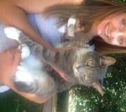Caring animal feeder, Balwyn based